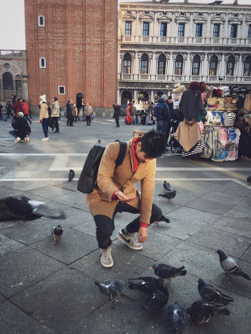 In the scene we can see plenty of pigeons roaming around the square. They are everywhere