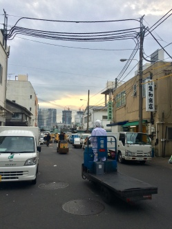 Tsukiji fish market situation in the early morning