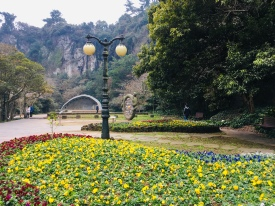 Beautiful park around Cheonjiyeon Waterfall