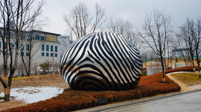 Zebra ball!