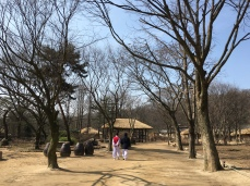 The folk village is very interesting and bring back the memories of Joseon dynasty movies. It gives much insights into old day Korea