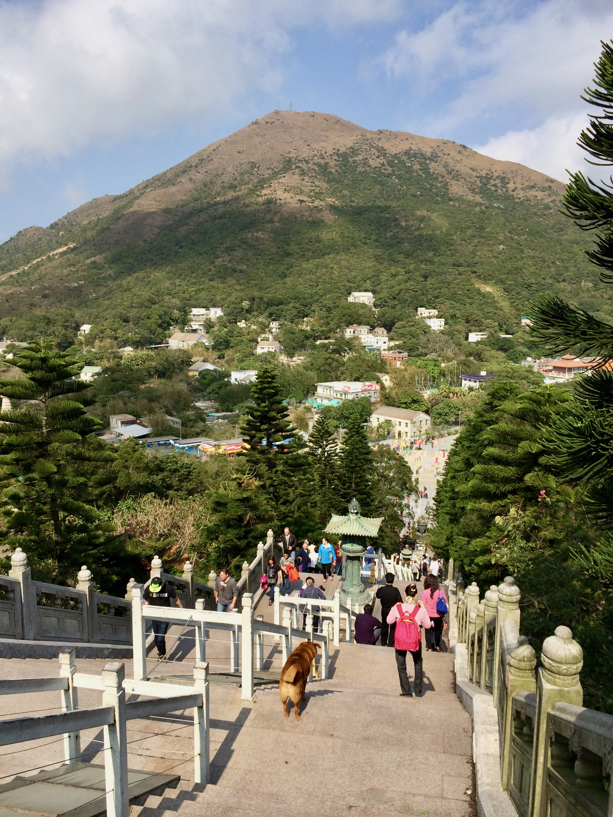 The 296 step climb was a good workout and very serene. However, there is also a small road for vehicles etc. so that any one with a physical disability is also able to visit.